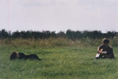 wolf_and_deer_bcr13_05